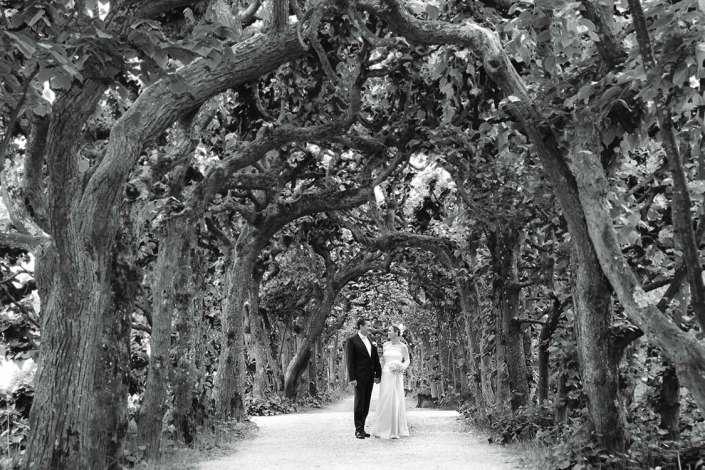 Hochzeitsfotograf Simmern, sw Hochzeitsfoto im Grünen