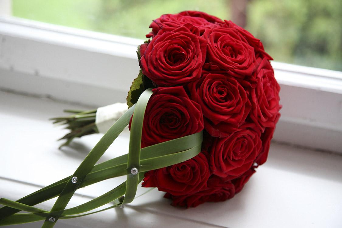 nur rote Rosen